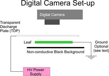 kirlian digital camera set up